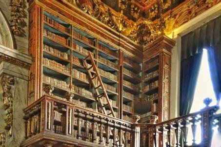 In der Barockbibliothek