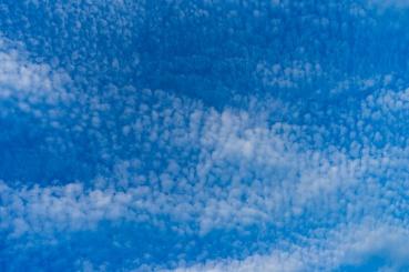Cirrus Cumulus #1
