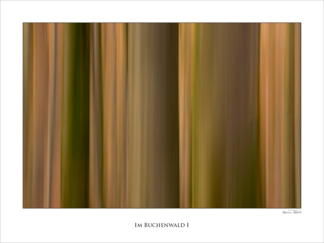 Im Buchenwald I