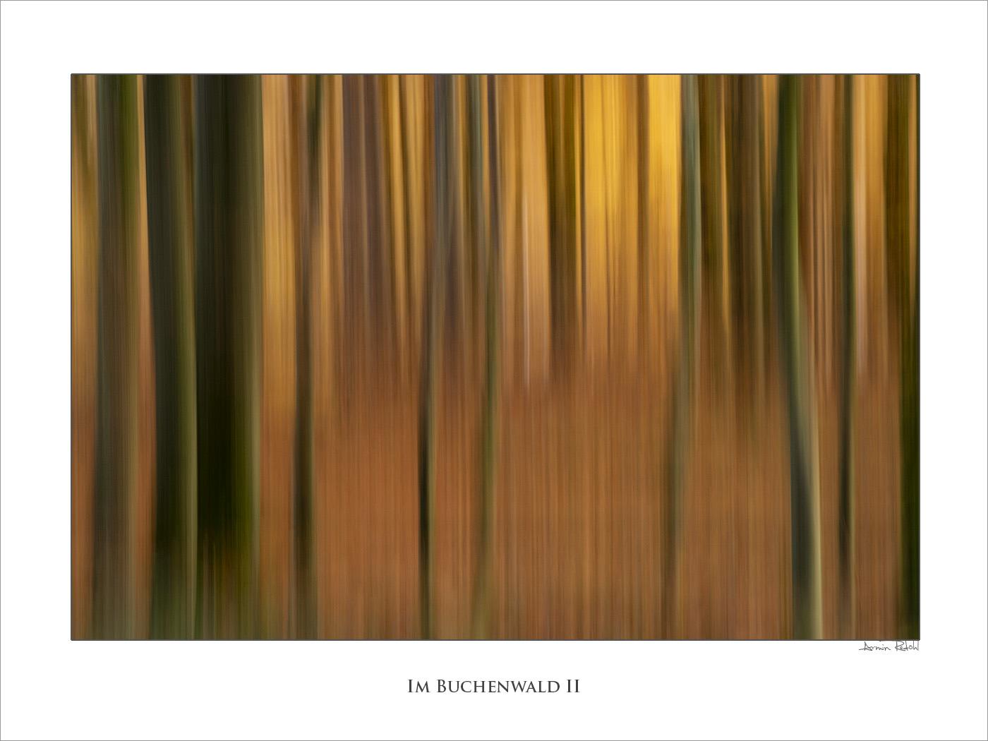 Im Buchenwald II
